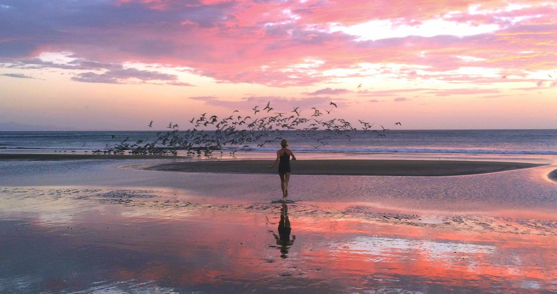 A girl chases a flock of birds on a beach as the sunsets creating a beautiful pink sky