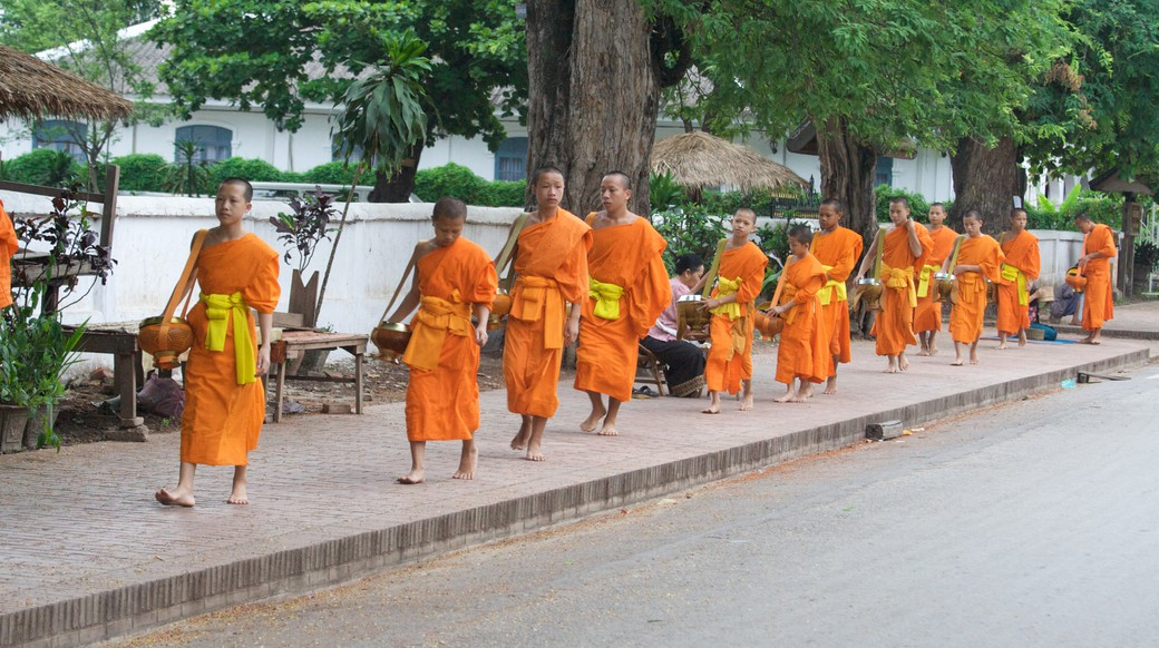 monks in laos heading out for their morning ritual