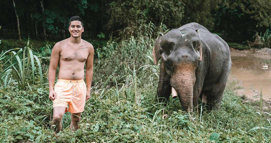 A traveler and an elephant in the jungle