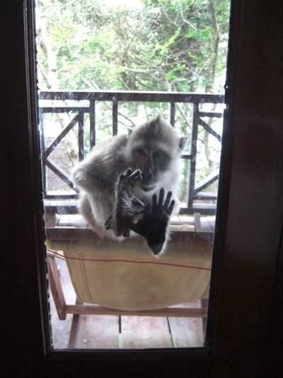 Best of Thailand 2008 - Part 3