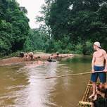 admiring water buffalos in Thailand while bamboo rafting down a river