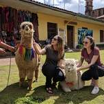 Girls petting llamas in Peru