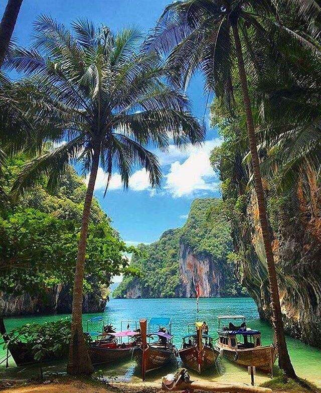 Phi Phi Beach Bungalows: Adventure Backpacking Tour Of Thailand Beaches, Islands
